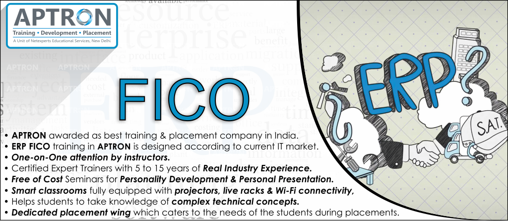 Best ERP FICO training institute in noida