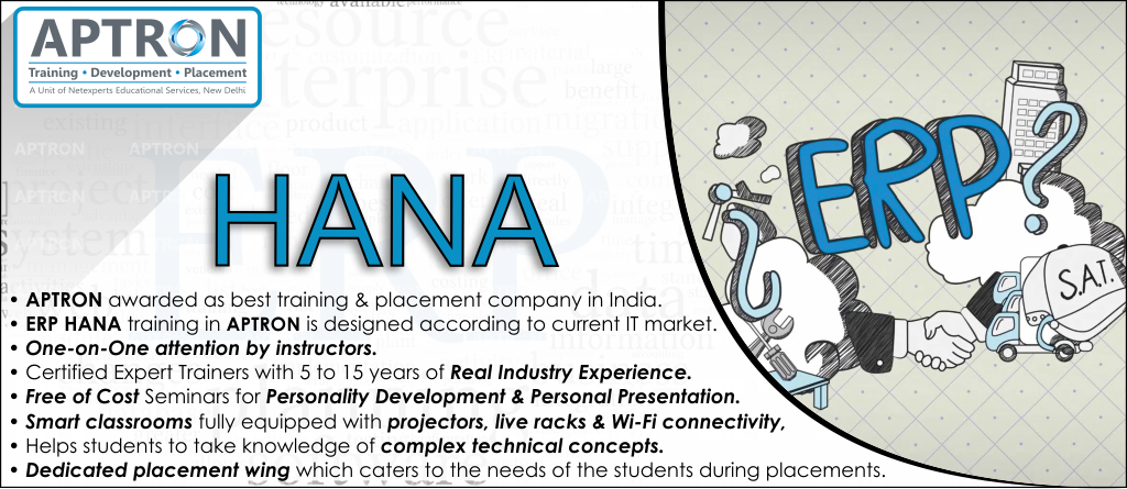 Best ERP HANA training institute in noida