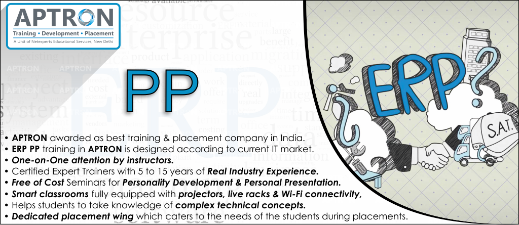 Best ERP PP training institute in noida