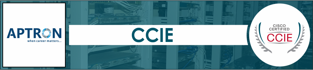 Best ccie training institute in noida
