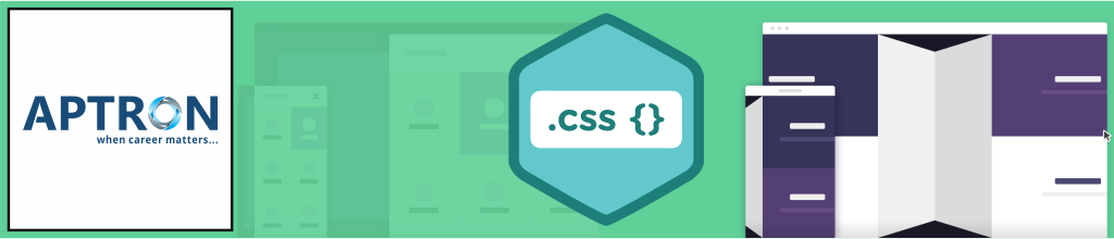 Best css training institute in noida