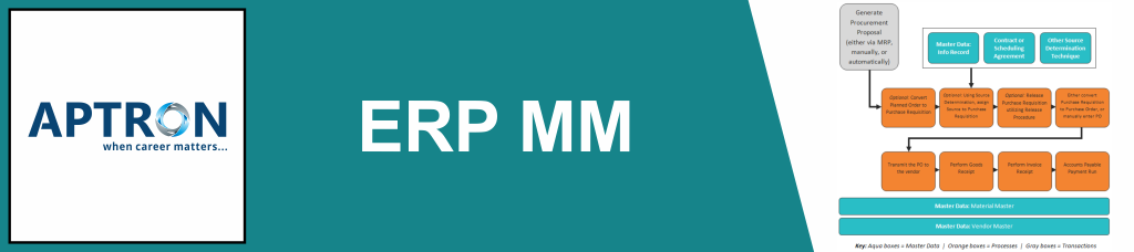 Best erp-sap-mm training institute in noida