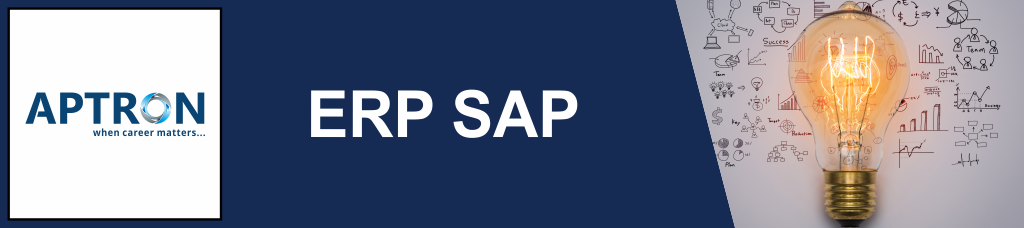 Best erp-sap training institute in noida