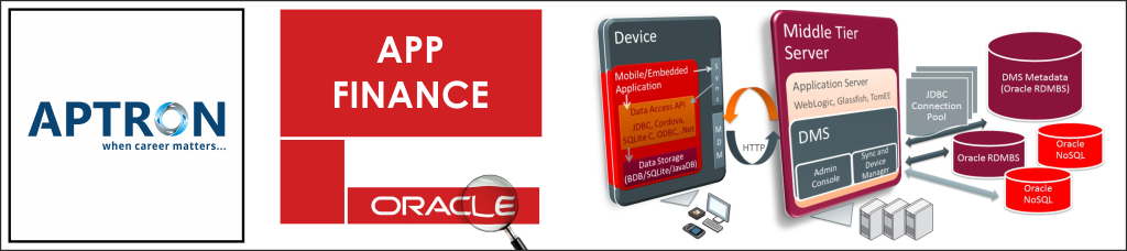 Best oracle-app-finance training institute in noida