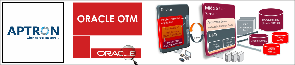 Best oracle-otm training institute in noida