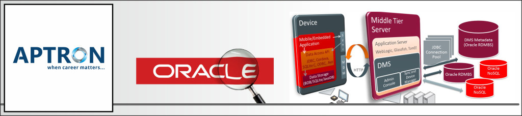 Best Oracle Training in Noida | Oracle Training Institute in Noida