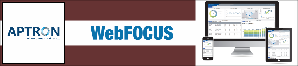 Best webfocus training institute in noida
