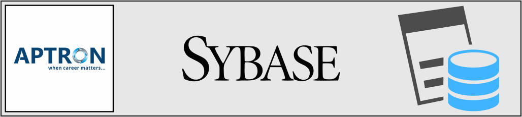 Best sybase training institute in noida